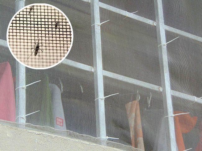 Lưới chống muỗi cho chuồng trại nên dùng loại nào tốt nhất?