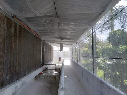 cửa lưới chống muỗi cho chuồng trại